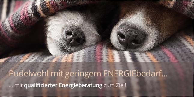 https://www.immobilienkontor-aachen.de/energieberatung.xhtml###Wärmedämmung, Energieeinsparung, Schonung der ökonomischen und ökologischen Ressourcen, Nachhaltigkeit ... Öl, Gas, Holz, Luft, Wasser, Sonne ... Passivhaus, Niedrigenergiehaus, KfW 55-/KfW 70-Haus etc. etc.