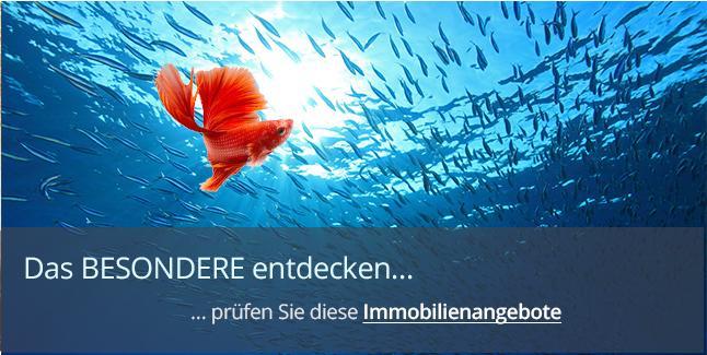 https://www.immobilienkontor-aachen.de/haeuser-zum-kauf.xhtml?f%5B3655-81%5D=0###Finden Sie jetzt Ihre Immobilie. Immobilienangebote in Aachen und Umgebung. Gleich informieren!