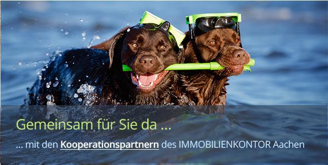 https://www.immobilienkontor-aachen.de/kooperationspartner.xhtml###Kooperationen fördern den Erfahrungsaustausch und erhöhen den Kundennutzen. Das Immobilienkontor Aachen arbeitet eng mit erfahrenen und etablierten Unternehmen, Rechtsvertretern und Gewerbetreibenden der Region zusammen. Hausverwaltung Aachen - Referenzen erfragen.