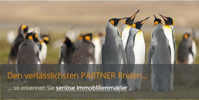 https://www.immobilienkontor-aachen.de/merkmale-serioeser-makler.xhtml###Das Berufsbild des Immobilienmaklers ist sehr komplex geworden. Schon längst beschränken sich Makler nicht mehr ausschließlich auf das einfache Nachweisen von Immobilien.